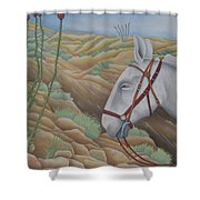 Miner's Companion Shower Curtain