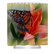 Mingle With A Monarch Shower Curtain