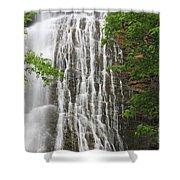 Mingo Falls Closeup Shower Curtain