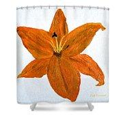 Mini #119 Shower Curtain