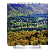 Mini Meadow Shower Curtain