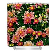 Mini Mums Autumn Tones By Kaye Menner Shower Curtain
