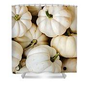 Mini White Pumpkins Shower Curtain