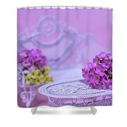Miniature Table And Chair Set With Kalanchoe Shower Curtain