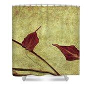 Minimal Art Shower Curtain by Aimelle