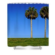 Minimal Palm Trees On A Hill In Saint Augustine Florida Shower Curtain