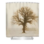 Minimal Winter Tree Shower Curtain