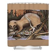 Mink At The Brook Shower Curtain