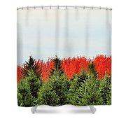 Minnesota Autumn 21 Shower Curtain