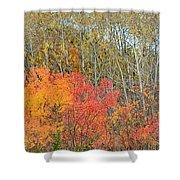 Minnesota Autumn 55 Shower Curtain