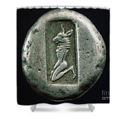 Minotaur On A Greek Coin Shower Curtain