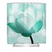 Mint Shower Curtain