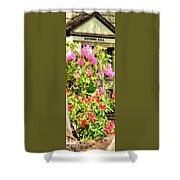 Minthorn Hall Vp Shower Curtain