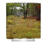 Miracle In The Meadow Shower Curtain