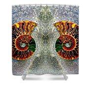 Mirrored Ammomite - 8305 Shower Curtain