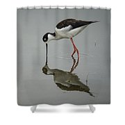 Mirrored Reflection Shower Curtain