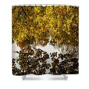 Mirrored Tree Shower Curtain