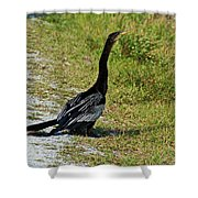 Mirthful Melody Shower Curtain