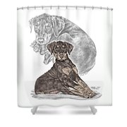 Mischief ... Moi? - Doberman Pinscher Puppy - Color Tinted Shower Curtain