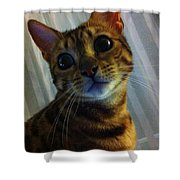Mischievous Bengal Cat Shower Curtain
