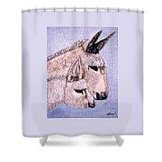 Mischievous Burros Shower Curtain