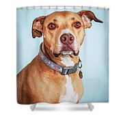 Mishka1 Shower Curtain