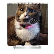 Miss Boots Shower Curtain