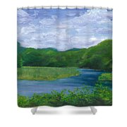 Miss Florences Backyard  Shower Curtain