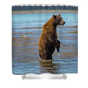 Missed It Shower Curtain