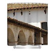 Mission San Luis Rey Shower Curtain