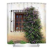 Mission Window With Purple Flowers Shower Curtain