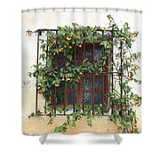 Mission Window With Yellow Flowers Shower Curtain