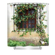 Mission Window With Yellow Flowers Vertical Shower Curtain
