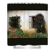 Mission Windows Shower Curtain