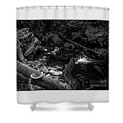 Missisquoi River In Vermont - 2 Bw Shower Curtain