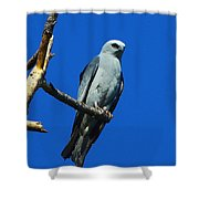 Mississippi Kite Shower Curtain
