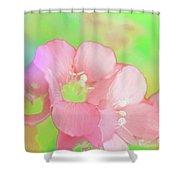 Missouri Wildflowers 5  - Polemonium Reptans -  Digital Paint 7 Shower Curtain