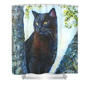 Missy In Tree Shower Curtain
