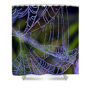 Mist In The Web  Shower Curtain