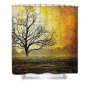 Mist Of Confusion Shower Curtain