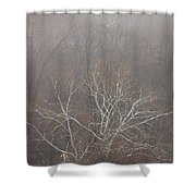 Mist Over The Hudson Shower Curtain