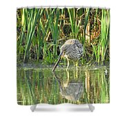 Mistaken Identity Shower Curtain