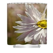 Mistakenly Secrets Shower Curtain