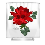 Mister Lincoln In The Garden Shower Curtain