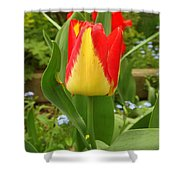Mister Tulip Waving Salute Shower Curtain