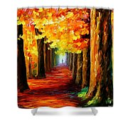 Mistery Alley Shower Curtain