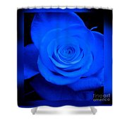 Misty Blue Rose Shower Curtain