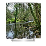 Misty Day On River Teign - P4a16017 Shower Curtain