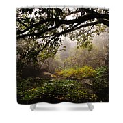 Misty Distance Shower Curtain