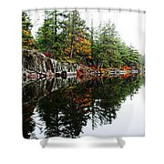 Misty Fall Shower Curtain